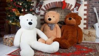Купить плюшевого медведя в Гродно