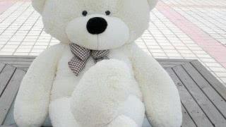 Купить плюшевого медведя в Минске дешево