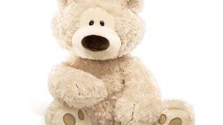 Цена плюшевых медведей в Гомеле