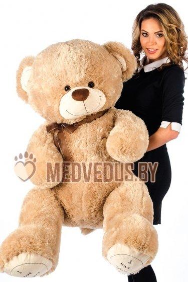 Купить медведя в Витебской области