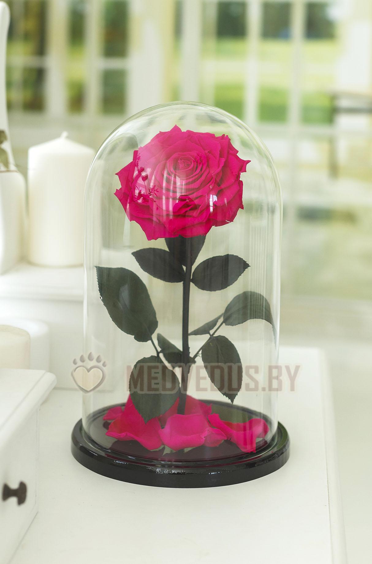 Ярко-розовая роза в колбе 32 см, Magenta Vip