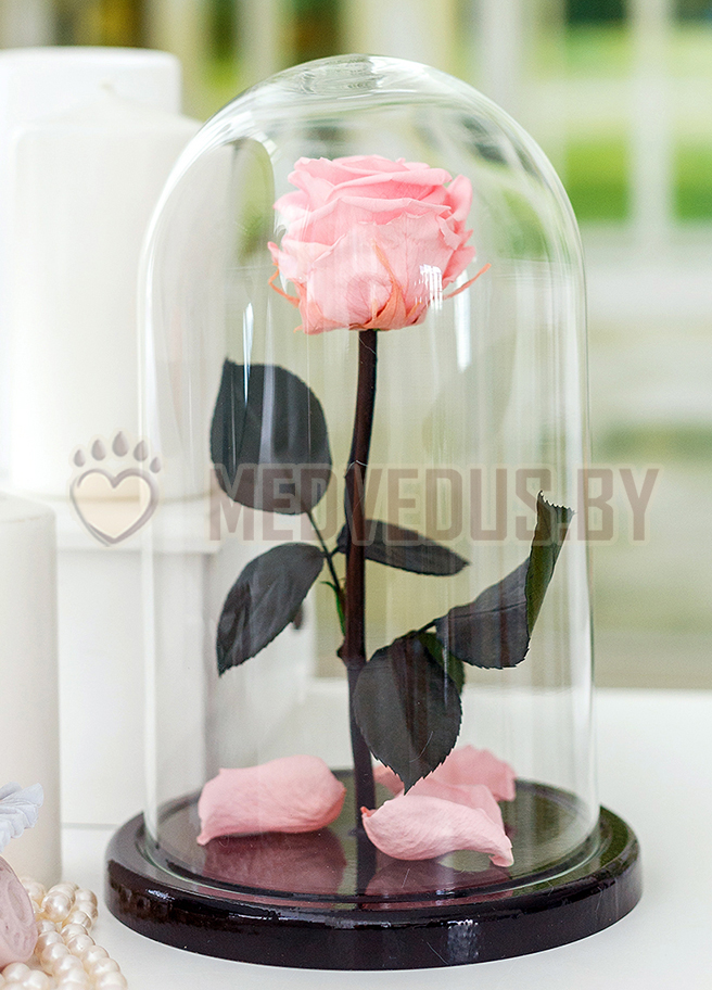 Нежно-розовая роза 28 см, Pretty Pink Elegant