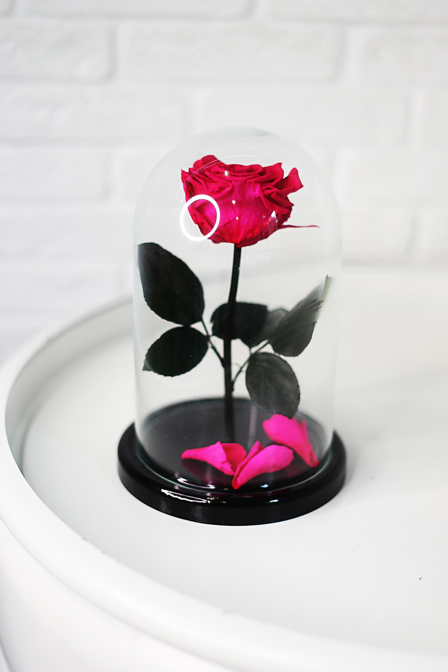 Розовая вечная роза в колбе 28 см, Magenta Premium