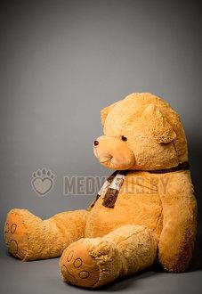 Огромный медведь Доминик 250 см Коричневый