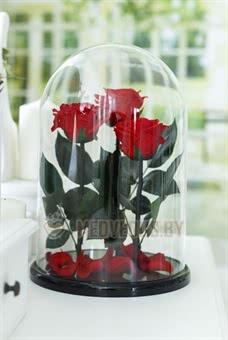 Композиция из роз в колбе 37 см, Three Lives Red Romantic