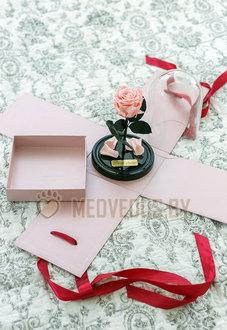 Розовая роза в колбе 22 см, Pretty Pink Mini