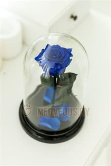Синяя Роза в колбе 28 см, Royal Blue Elegant