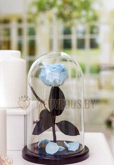 Голубая вечная роза в колбе 28 см, Baby Blue Elegant