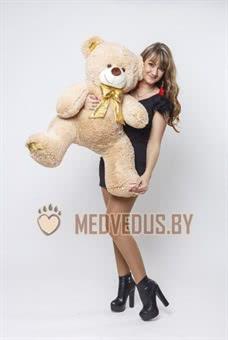 Купить плюшевого медведя в Дубровно