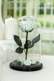 Ментоловая роза в колбе 28 см, Mint Premium