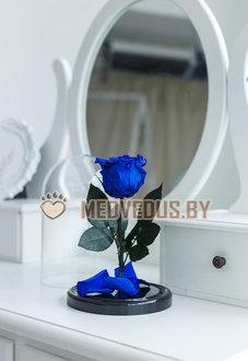 Синяя роза в колбе 22 см, Royal Blue Mini