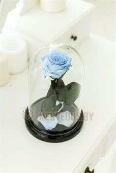 Голубая роза в колбе 22 см, Baby Blue Mini