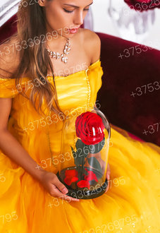 Красная роза в колбе 28 см, Romantic Red King