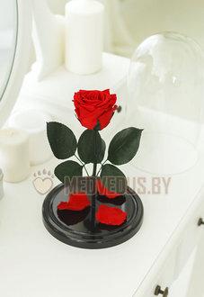 Красная вечная роза 28 см Romantic Red Elegant