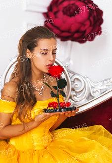 Красная Роза в колбе 28 смRomantic Red Premium