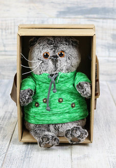 Купить кота Басика в Минске